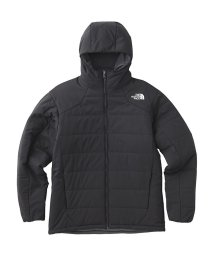 THE NORTH FACE/ノースフェイス/メンズ/REVERSIBLE ANYTIME INSULATED HOODIE/501466825