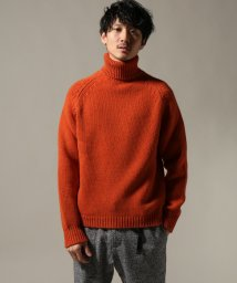 EDIFICE/E.TAUTZ / イートウツ ROLL NECK JUMPER/501472834