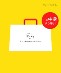 E hyphen world gallery/【2019年E hyphen world gallery】1万2千円HappyBag/501478673