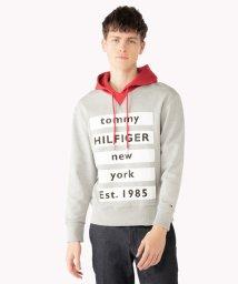 TOMMY HILFIGER MENS/リラックスフィットフーディー/501476300