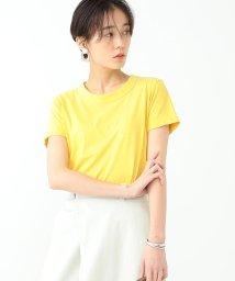 Ray BEAMS/【WEB限定】ORCIVAL / ベーシック Tシャツ/501487978