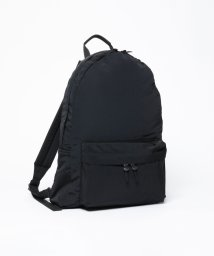 BEAUTY&YOUTH UNITED ARROWS/<STANDARD SUPPLY> DAYPACK/バッグ/501198881