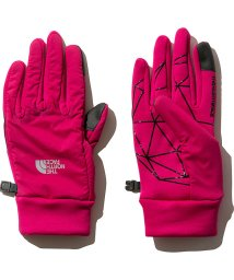 THE NORTH FACE/ノースフェイス/RED RUN PRO GLOVE/501505543
