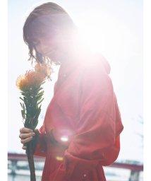 Mila Owen/★ウエストドッキングシャツワンピース/501509800