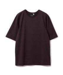 Demi-Luxe BEAMS/【CLASSY.3月号掲載】ATON / スビン パーフェクト ショートスリーブ Tシャツ/501409572
