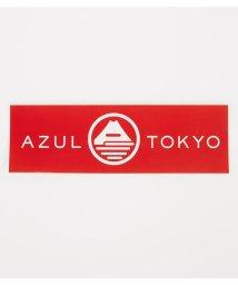 AZUL by moussy/AZUL FUJIロングステッカー/501486672