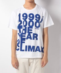 CABANE de ZUCCa/(30)THE YEAR OF CLIMAX/501510851