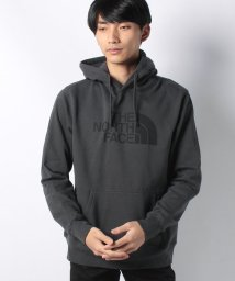 THE NORTH FACE/THE NORTH FACE Men's Half Dome Pullover Hoodie/501507320