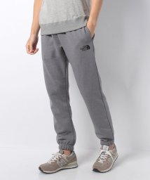 THE NORTH FACE/THE NORTH FACE Men's Never Stop Pant/501507329