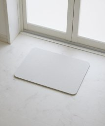 珪藻土/珪藻土バスマットコンパクトサイズ 40×30cm/501522376