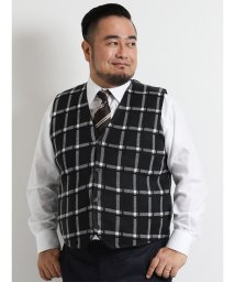 GRAND-BACK/【大きいサイズ】裏キルト格子柄ジレ/501525851