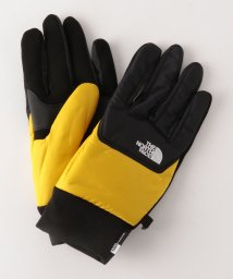 BEAUTY&YOUTH UNITED ARROWS/<THE NORTH FACE(ザノースフェイス)> NUPTSE GLOVE/グローブ/501530221