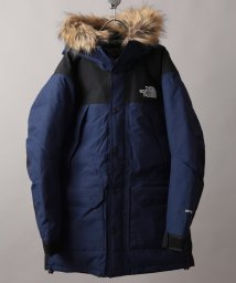 JOURNAL STANDARD/THE NORTH FACE  / ザノースフェイス : Mountain Down Coat/501540479