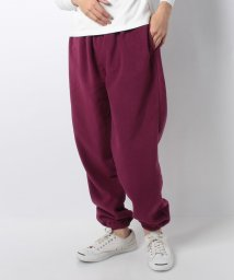 JOURNAL STANDARD MEN/CHUMS FLEECE PANTS/501533615