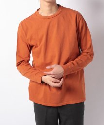 JOURNAL STANDARD MEN/6oz US Cotton Color L/S/501533677