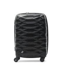 PROTeCA/プロテカ スーツケース PROTeCA エアロフレックスライト Aeroflex Light キャリーケース 超軽量 機内持ち込み 37L 1~2泊 ACE 0/501548026