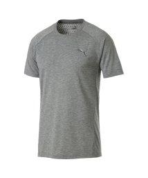 PUMA/プーマ/メンズ/EVOSTRIPE SS Tシャツ/501557569
