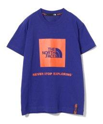 Ray BEAMS/【WEB限定】THE NORTH FACE / Rage Box Logo Tshirt/501546961