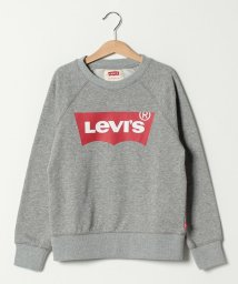 LEVI'S MEN/Batwing Pullover/501555899
