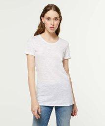 SISLEY/コットンモダールラウンドネック半袖Tシャツ・カットソー/501566514