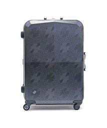 PROTeCA/プロテカ スーツケース PROTeCA プロテカ EQUINOX LIGHT ORE LTD2 96L 10~14泊 限定 00847 エース ACE /501621591