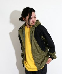 JOURNAL STANDARD/THE NORTH FACE PURPLE LABEL / ノースフェイス PPL : Mountain Wind Parka/501627371