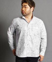 HIDEAWAYS NICOLE L/<大きいサイズ>総柄長袖シャツ/501591768