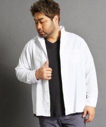 HIDEAWAYS NICOLE L/<大きいサイズ>コットンカラーシャツ/501591769