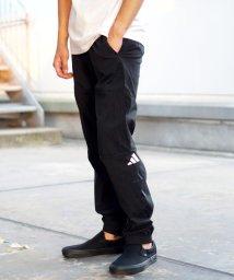 BEAMS OUTLET/adidas / ザ パック ウインド パンツ/501589969