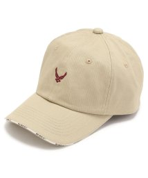 AVIREX/【otona MUSE 1月号掲載】【FINEBOYS 6月号掲載】USAF ロゴ キャップ/USAF LOGO CAP/501880628