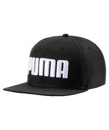 PUMA/プーマ/メンズ/プーマ フラットブリム キャップ/501893019