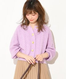 NICE CLAUP OUTLET/【natural couture】金釦使いケーブルクルーカーデ/501884303