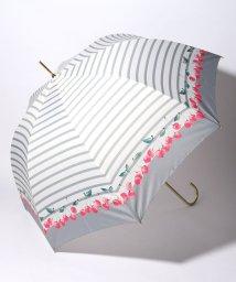 pink trick/BE SUNNY ビーサニー 深張ジャンプ傘 長傘 チェリーボーダー  (晴雨兼用 UVカット 紫外線カット 耐風 軽量 撥水)/501896964