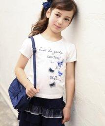 BeBe/チョウチョプリントTシャツ/501908799
