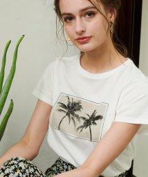 Noela/ヤシの木Tシャツ /501926773
