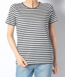 McGREGOR/【一部店舗限定】McGマリンボーダー IVY Tシャツ/501904720