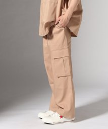 JOURNAL STANDARD/KINDAGARDEN / カインダ・ガーデン : WORKWEAR CARGO WIDE PANTS/501937490