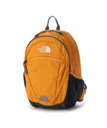 THE NORTH FACE/ザ ノース フェイス THE NORTH FACE ジュニア デイパック K SMALL DAY NMJ71653/501940611