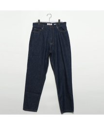 GUESS/ゲス GUESS JAMES RELAX STRAIGHT DENIM PANT 【JAPAN EXCLUSIVE ITEM】 (INDIGO BLUE)/501940746