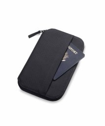 BEAUTY&YOUTH UNITED ARROWS/<Aer> TRAVEL PASSPORT CASE/パスポートケース/501948255