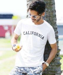 JIGGYS SHOP/マルチプリントUSAコットン半袖T / Tシャツ メンズ おしゃれ ティーシャツ 半袖 半袖Tシャツ プリント ロゴ/501948087
