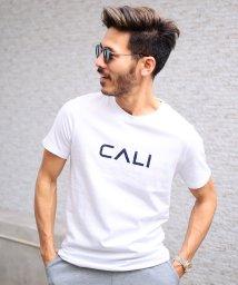 JIGGYS SHOP/マルチプリントUSAコットン半袖T / Tシャツ メンズ おしゃれ ティーシャツ 半袖 半袖Tシャツ プリント ロゴ/501948091