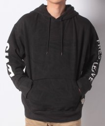 LEVI'S MEN/RELAXED GRAPHIC HOODIE JT OVERSIZED GRAP/501933651