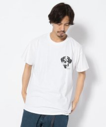 BEAVER/MANASTASH/マナスタッシュ DOG TEE 半袖Tシャツ/501961649