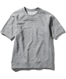 THE NORTH FACE/ノースフェイス/メンズ/S/S COLOR HEATHERED SWEAT CREW/501968119