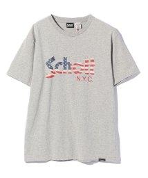 Schott/US FLAG LOGO T-SHIRT/星条旗柄 ロゴTシャツ/501968855