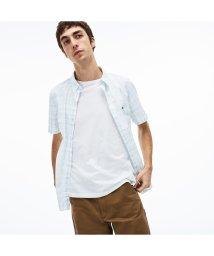 LACOSTE Mens/【TVドラマ着用】スリーブロールアップチェックシャツ/501971403