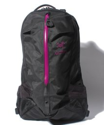 ARC'TERYX/ARC'TERYX (アークテリクス) Arro 22 Backpack 6029/501972252