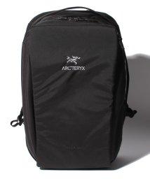 ARC'TERYX/Arcteryx Blade 28 Backpack/501972253
