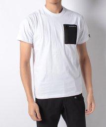 TARAS BOULBA/タラスブルバ/メンズ/ポケットTシャツ/501974516